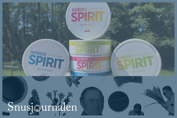 "Nordic Spirit – Chad ""Snubie"" Jones recenserar"