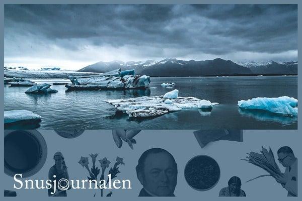 Snus på Island